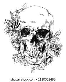 Skull with flowers, with roses. Drawing by hand. Vector. Illustrator 10.