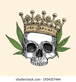 skull of human with crown and cannabis, hand drawing, vector illustration, Black and White