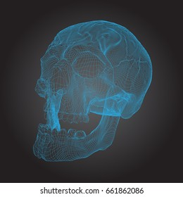 Skull Human, Scary, Locally Deformed in Blue Lines on the Dark background, Left view, geometric polygons cranium line art. Vector Illustration
