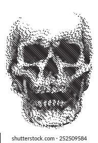 skull line black and white