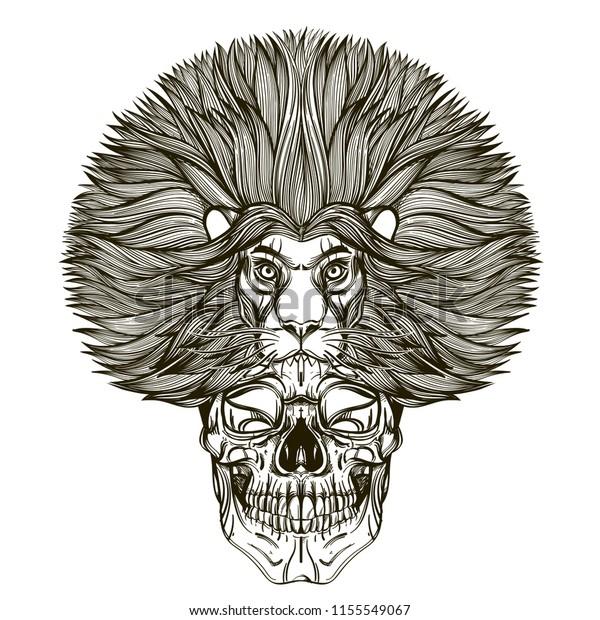 Skull Lion Mask Outline Vector Illustration Stock Vector Royalty Free 1155549067 Compra lion mask a buen precio y de calidad con aliexpress. https www shutterstock com image vector skull lion mask outline vector illustration 1155549067