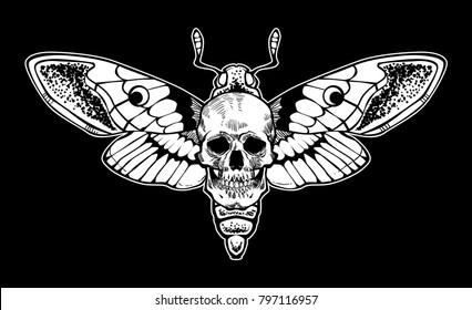 skull moth vector file