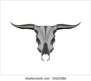 skull of the oxen