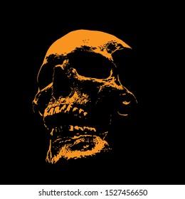 Skull portrait silhouette in contrast backlight. Vector. Illustration.