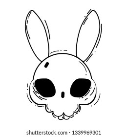 Skull of a rabbit on a white background