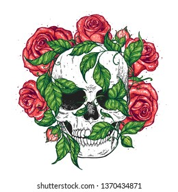 Skull and roses flowers hand drawn illustration. Tattoo vintage print. Skull, ivy and red roses.