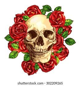 Skull With Roses Hand Drawn Illustration