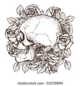 Skull And Roses In Profile