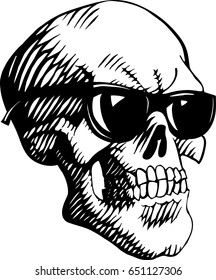 Skull spectacled. Isolated. Vector illustration