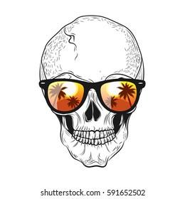 984e3f83bbd6 Skull in sunglasses. Vector illustration