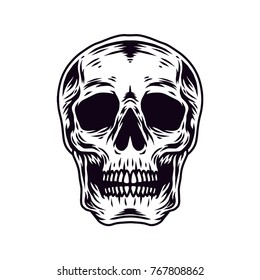 Skull vector Hand Drawn