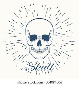 skull and vintage sun burst frame, excellent vector illustration, EPS 10