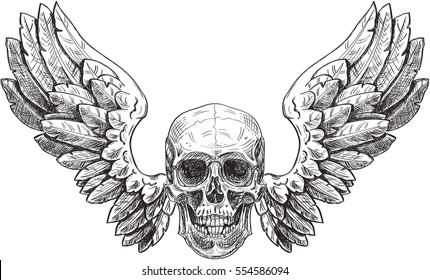 Skull and wings in engraving style