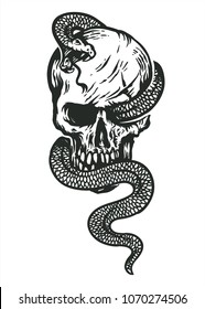 skull wrapped by snake hand drawing  line art black and white