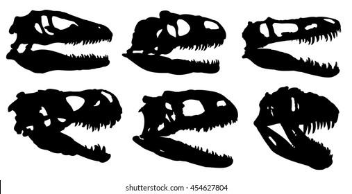 Skulls of dinosaurs.