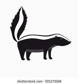Skunk. Flat cartoon vector illustration, isolate on white background