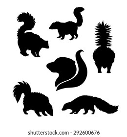 Skunk icons and silhouettes. Set of illustrations in different poses.