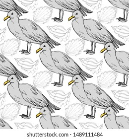 Sky bird seagull in a wildlife. Wild freedom, bird with a flying wings. Black and white engraved ink art. Seamless background pattern. Fabric wallpaper print texture.