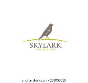 Skylark Bird Vector Concept
