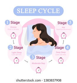 Sleep cycle infographics. Stage of sleep during the night. Phase of deep and moderate sleep, drowsy time. Isolated vector illustration in cartoon style