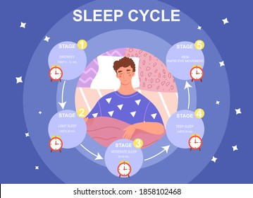 Sleep cycle infographics. Stage of sleep during the night. Phase of deep and moderate sleep, drowsy time. Flat cartoon vector illustration with fictional character