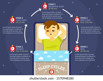 Sleep cycle infographics, vector flat style design illustration. Sleep phases or stages diagram, scheme, education poster template.
