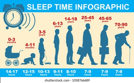 Sleep and cycle of life. How much sleep do you need? Info graphics. Vector illustration.