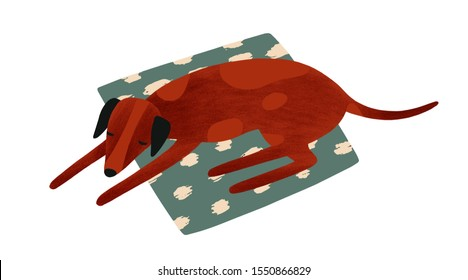 Sleeping dog flat vector illustration. Cute pet lying on textile carpet. Brown pedigreed hound waiting for owner. Four-legged friend, domestic animal. Dog isolated on white background.