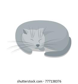 A sleeping gray cat. Vector cartoon illustration