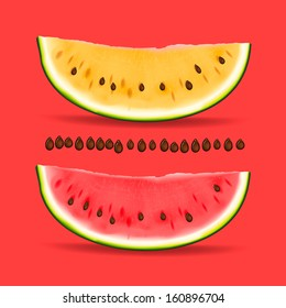 Slice of nice fresh yellow and red watermelon, vector image.