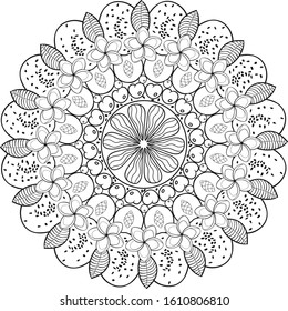 Sliced tropical fruit bowl mandala decorated with exotic flowers,leafs and chia seeds. Black on transparent outline coloring mandala.