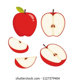 Slices of apple illustration vector