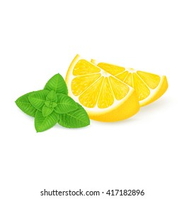 Slices of lemon with mint isolated on white background. Realistic vector illustration.