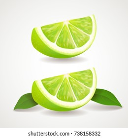 Slices of lime isolated icon. Realistic vector illustration.