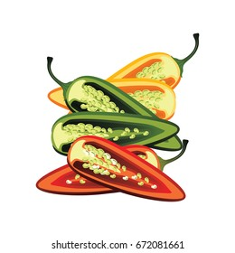 slices of raw green, yellow, red jalapeno pepper. vector illustration