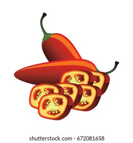 slices of raw red jalapeno pepper. vector illustration