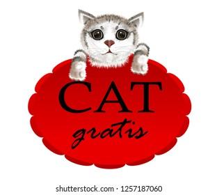 slogan cat gratis