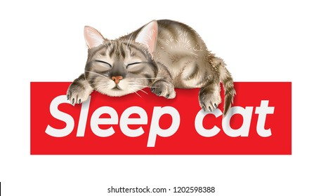 slogan with sleeping cat illustration
