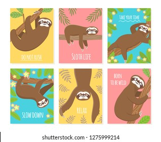 Sloth card. Cute slumber animal, sleepy lazy sloths. Child t-shirt, pajamas vector design