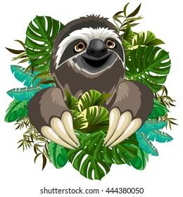 Sloth Cartoon on Tropical Jungle