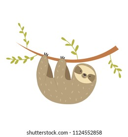 Sloth hanging on the tree. Vector funny sloth illustration for tropical design. Adorable cartoon animal