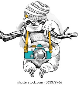 Sloth in a knitted hat with the camera on branch. Vector illustration.
