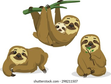 Sloth Rain forest Two Toed Lazy Mammal Hanging Sloths