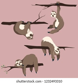Sloths cartoon animals vector clip art . Illustration of cute character hand drawn animals .