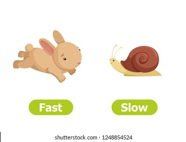 SLOW and FAST antonyms word card vector template. Opposites concept. Flashcard for english language learning. The rabbit runs fast, the snail crawls slowly.