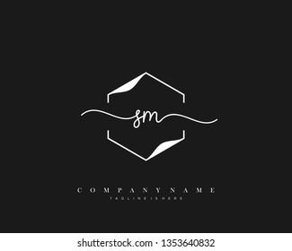 SM initial handwriting logo template vector
