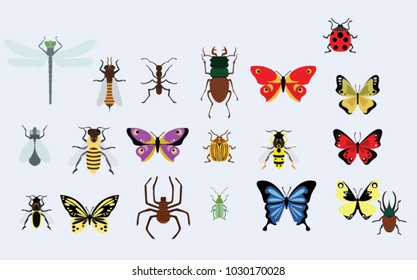 small animals vector images