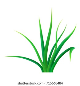 Small bunch grass icon. Realistic illustration of small bunch grass vector icon for web design isolated on white background