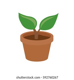 Small cartoon plant in pot