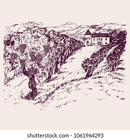 Small chateau with vineyard on mountain hills, hand drawn doodle, drawing suitable for wine label design, sketch in pop art style, black and white vector illustration